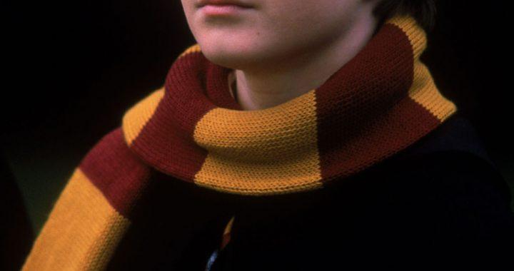 ¿Qué está haciendo hoy día el actor de Harry Potter?